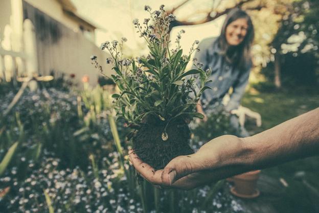 Composting 101 for Home Gardens