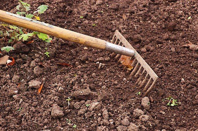 garden-rake-pixabay