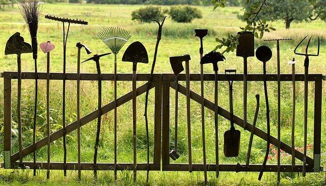10 Basic Tools For Beginner Gardeners