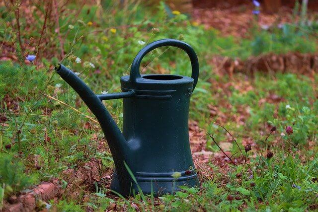 watering-can-pixabay